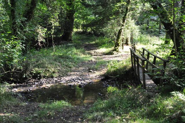 Mid Devon : Den Brook & Woodland