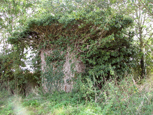 Overgrown RAF pillbox
