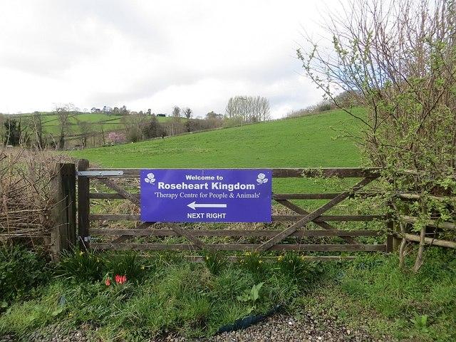 Gate, Lye