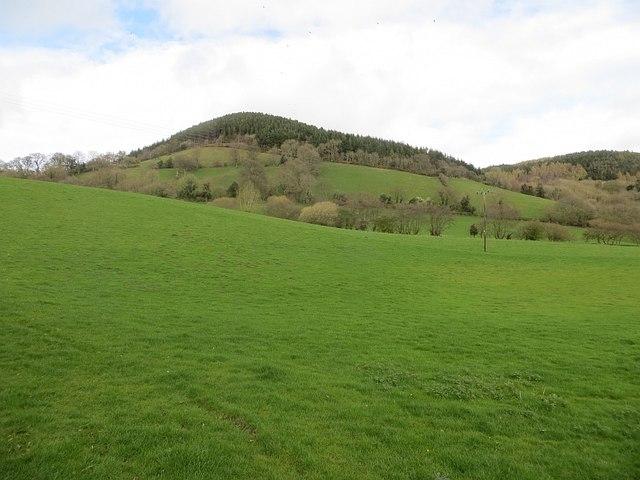 Field below Upper Lye