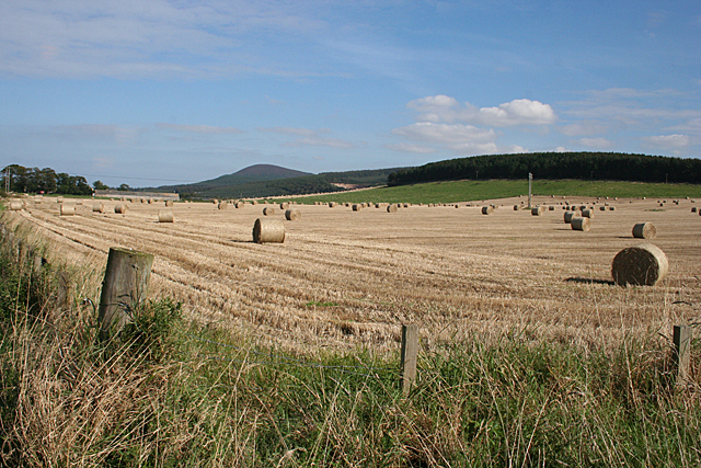Bales near Cleanhill