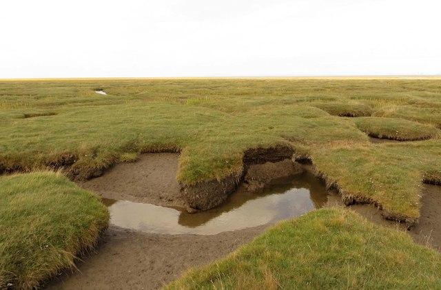 Pilling Marsh