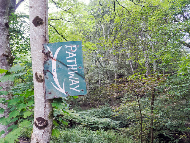 At the start of the footpath up the south side of Fairy Glen