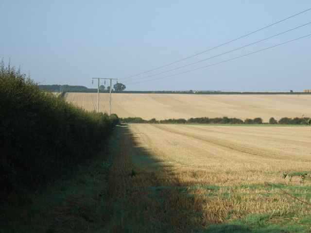 Stubble field and hedgerow, Thornholme Field