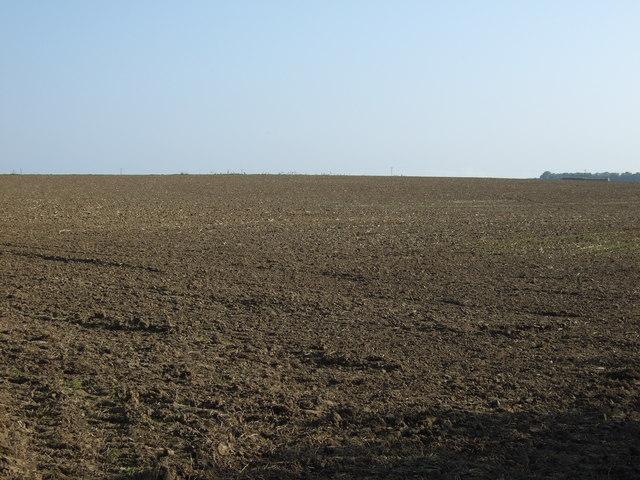 Farmland near Thornholme