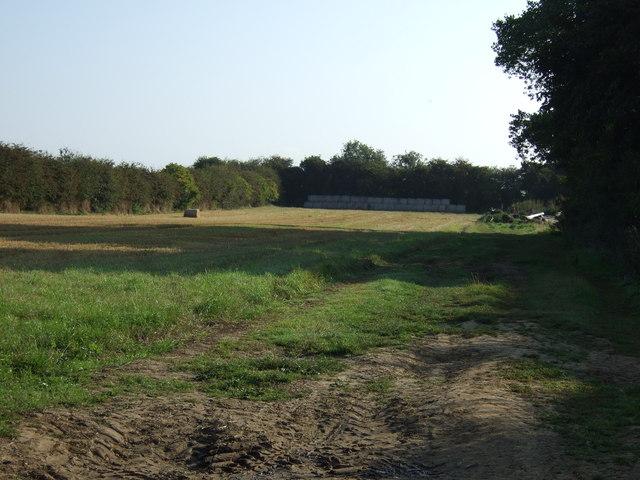 Small field, Thornholme