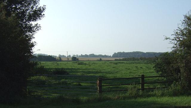 Town Pasture,  Thornholme