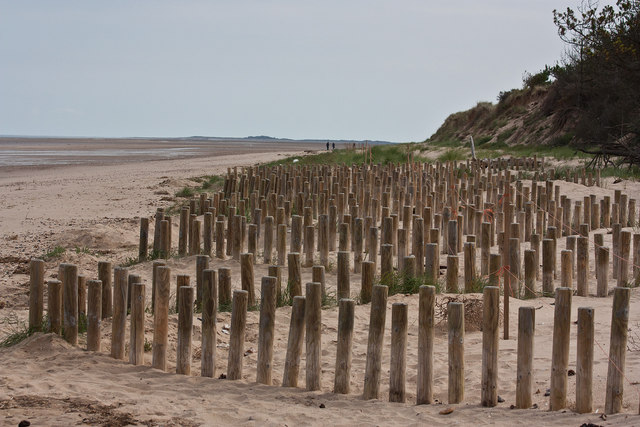 Zigzag groynes at the back of the beach