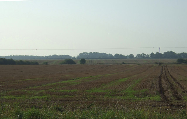 Stubble field, Town Pasture