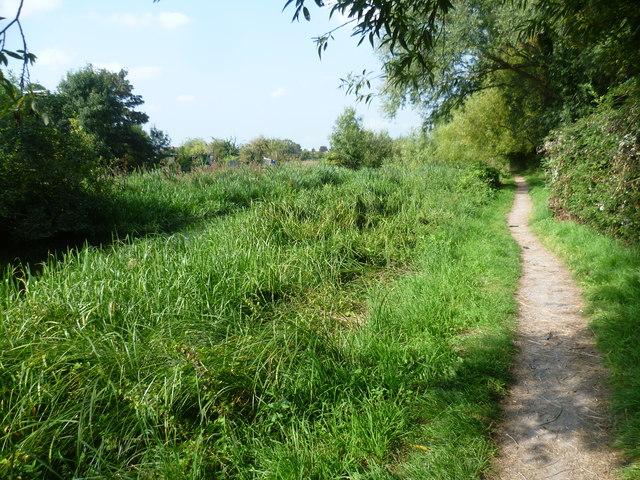 Path alongside The Duke of Northumberland River