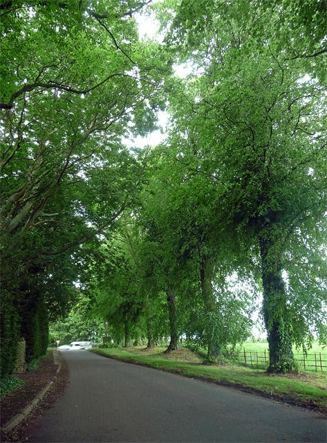 Manor Road, Hanging Houghton