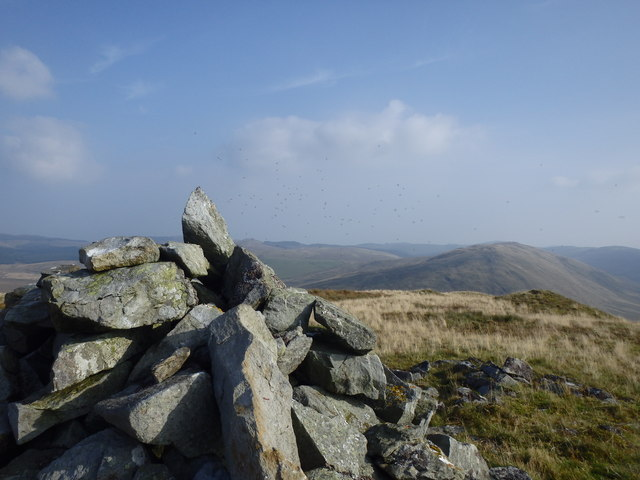 Cairn and Flying Ants, Drosgol