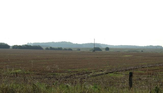 Farmland, Town Pasture