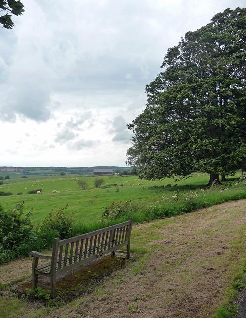 Farmland near Lamport