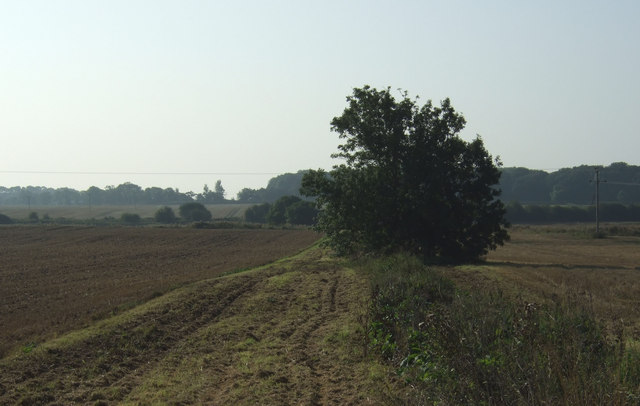 Footpath to Burton Agnes Moor