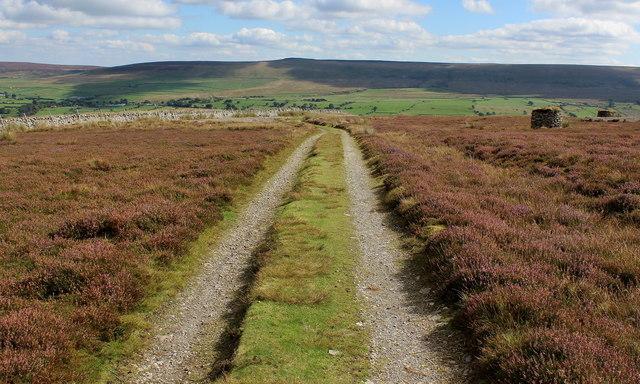 Track on Carlton Moor