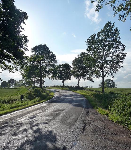 Courteenhall Road near Blisworth
