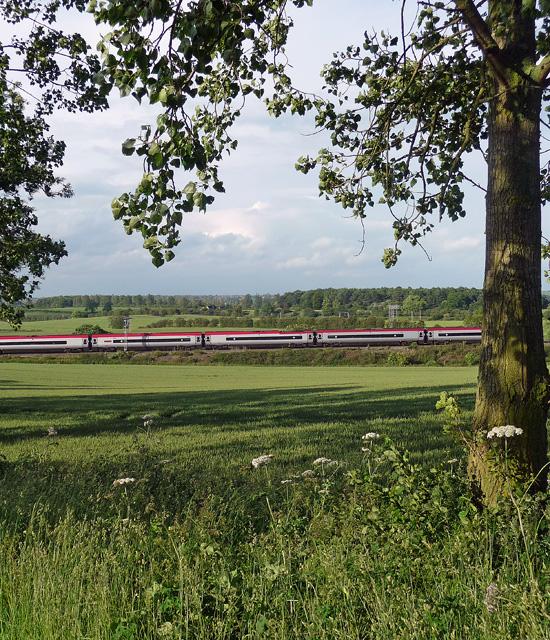 Farmland near Blisworth