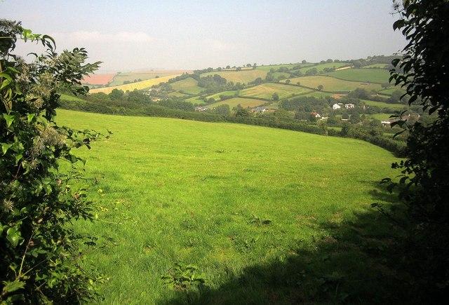Field above Gabwell