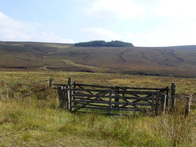 Gate to the moor