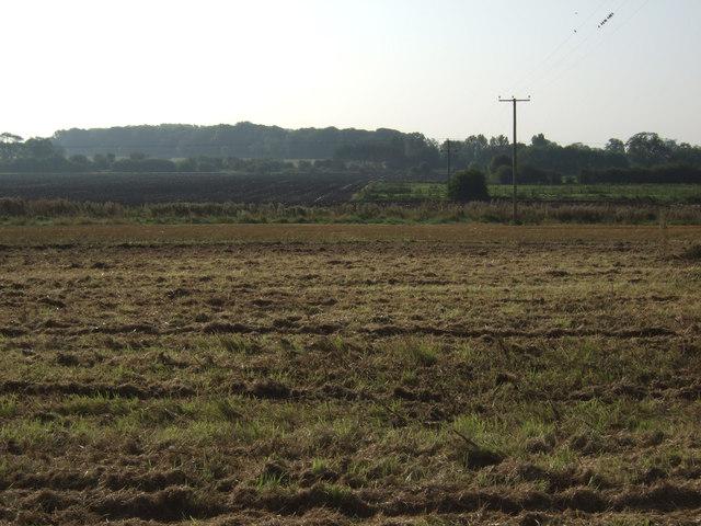 Farmland, Burton Agnes