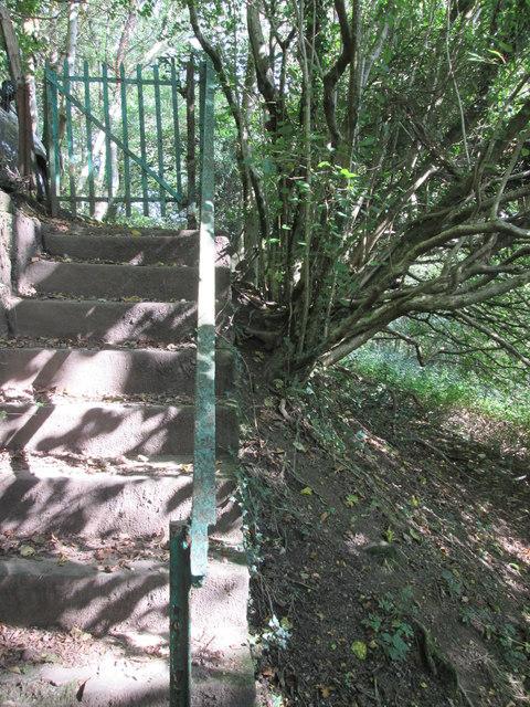Footpath Steps & Gate