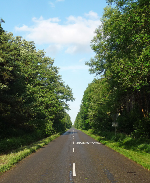Country road near Hartwell (1)