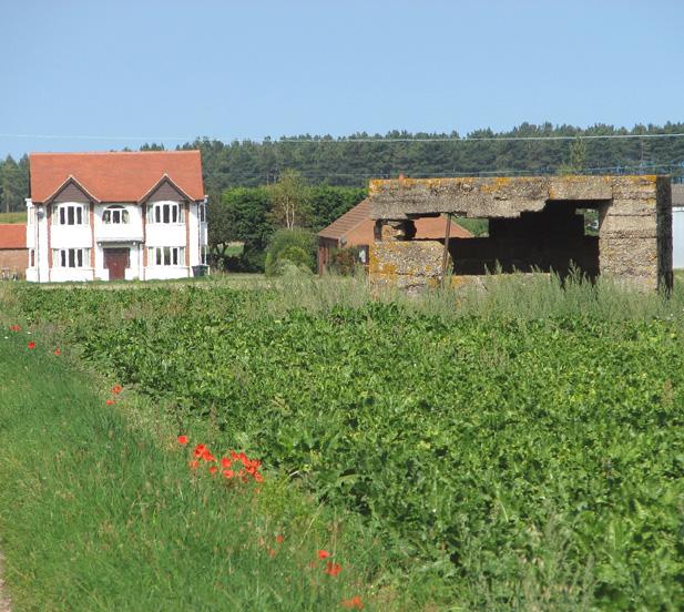 Pillbox by Westgate Farm