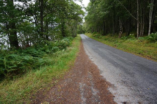 Minor road on the Southside of Loch Rannoch