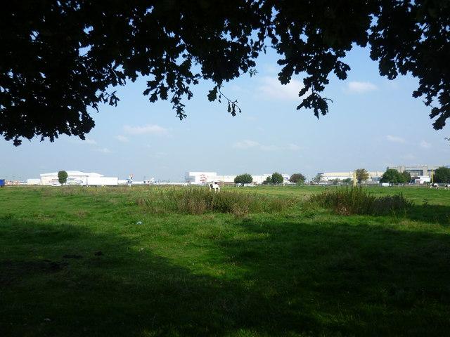 Horse pasture near Heathrow