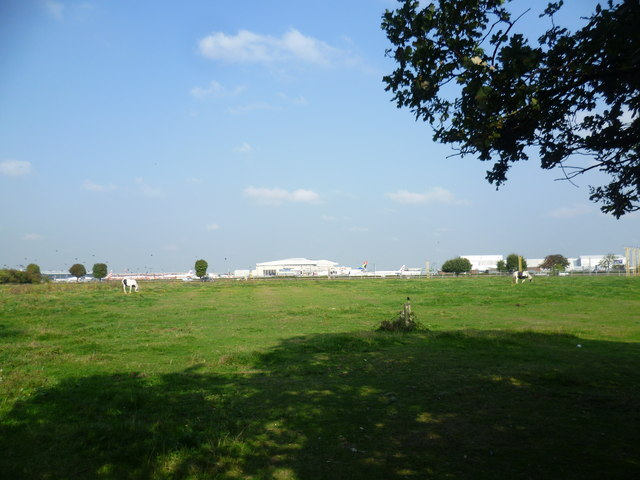 Looking across a horse pasture to Heathrow
