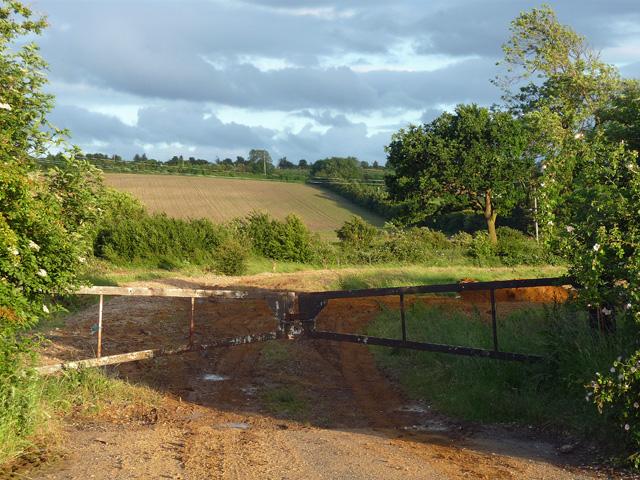 Farmland near Tilsworth