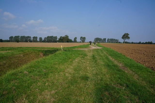 Track leading to Thorouhfare (road)