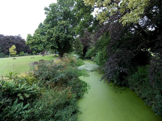Green slime on the Eye in Melton Mowbray