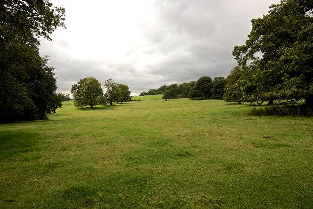 Tyntesfield Park