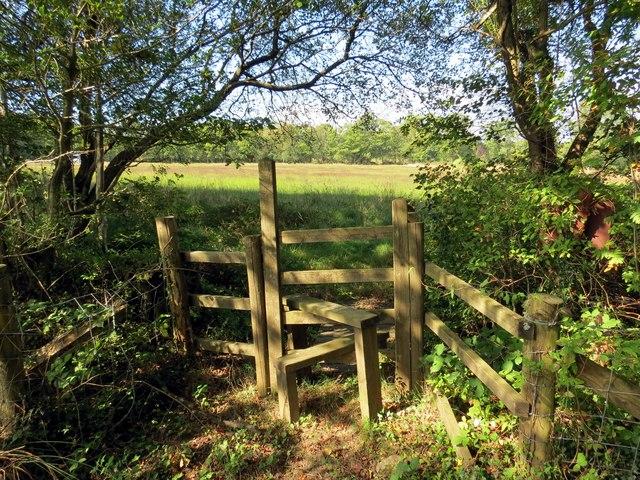 Llwybr Pen Llwyn Helyg Path