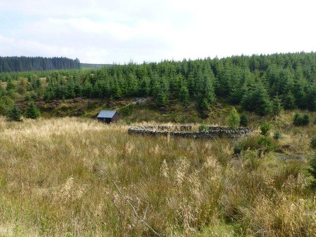 Sheepfold and shepherd's hut