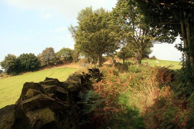 Walled footpath on Hollin Edge