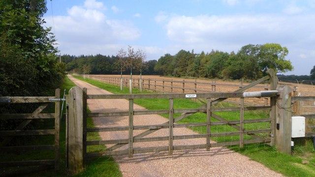 Gate at Studdridge Farm