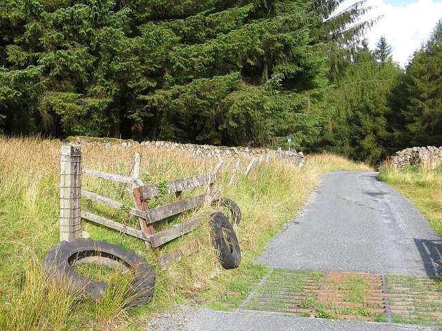 Cattle grid, Crooked Road