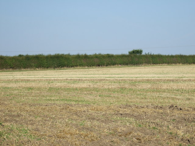 Farmland towards Rudston Road
