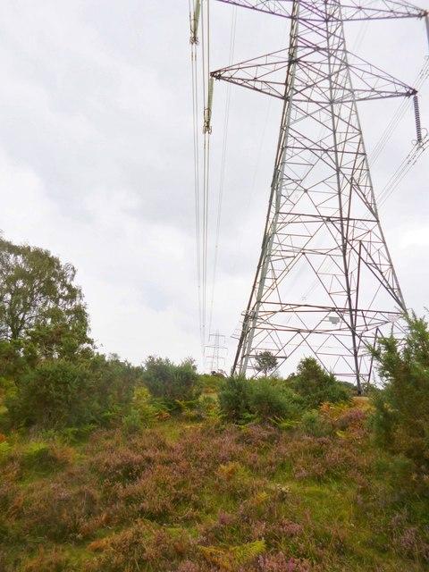Hale Purlieu, power lines