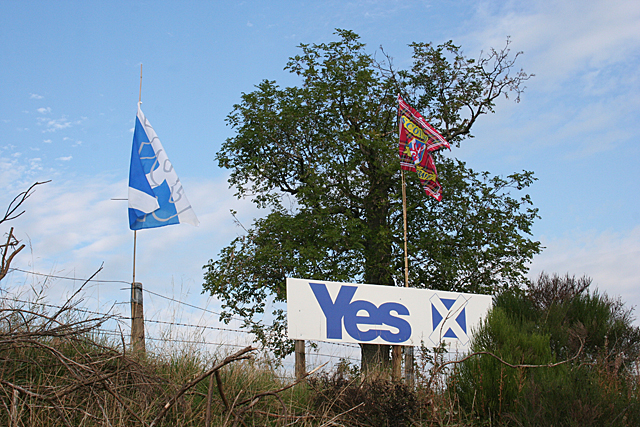 Yes Campaign Sign