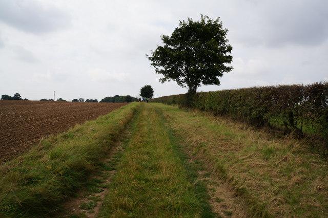 Bridleway towards Thorganby
