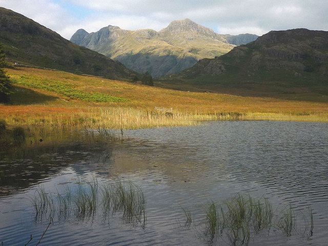Blea Tarn - the view that launched a thousand postcards