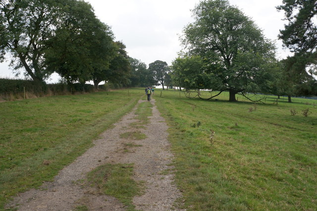 Bridleway towards Thorganby