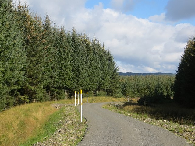 New road, Ae Forest