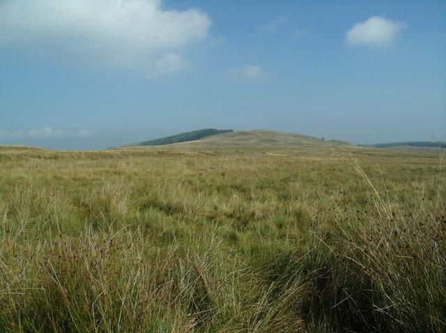 Moorland, Tak Ma Doon road