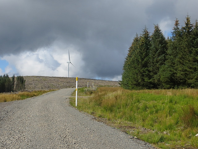 Road from Ae to Beattock