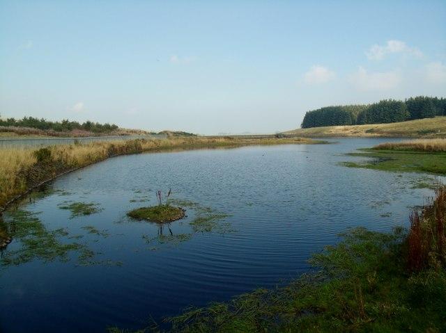 Faughlin Reservoir
